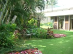 Gardens off of lobby along hallway to pool